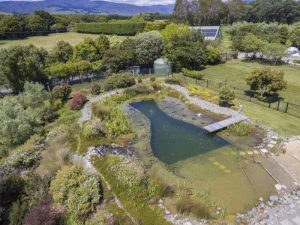 Natural Pool | Greenolive Homestead